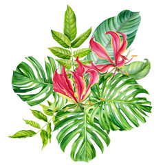 Tropical bouquet, flowers, fire lily, monstera, palm leaves, Strelitzia leaf on an isolated white background, watercolor hand drawing