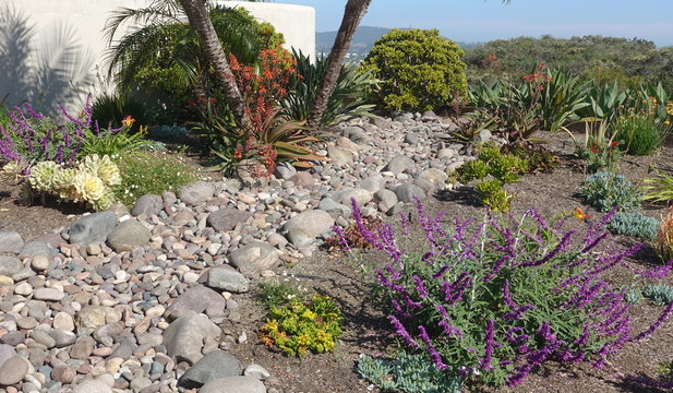A man-made dry wash incorporated into drought tolerant landscape design.