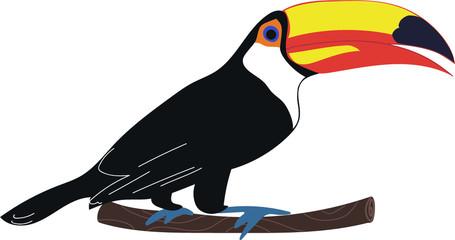 Toucan bird. Woodpecker character. Vector illustration. Fototapete