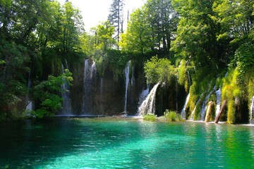 Wall Murals Waterfalls Scenic View Of Waterfall In Forest