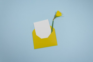 Minimalistic composition with a beautiful festive yellow mustard envelope, white blank card and Narcis flower on a trendy blue pastel background. Place for text. Flat lay. Top view