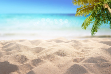 Fototapete - Sandy beach with blurry blue ocean and palm tree