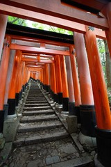 Vertical image of red Torii gates at the Fushimi Inari Taisha in Kyoto, Japan