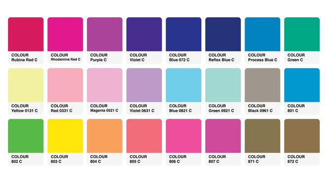 Pantone Colour Palette Catalog Samples Vector in RGB
