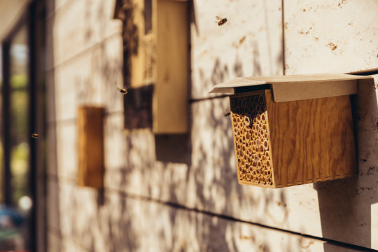 Bee hotel being visited by bees