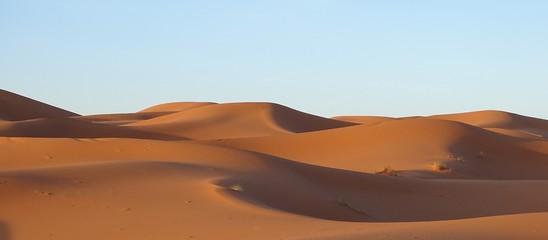Obraz Scenic View Of Desert Against Clear Sky - fototapety do salonu