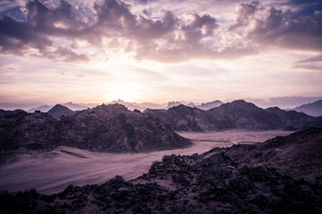 Foto auf AluDibond Lavendel Mountain Landscape