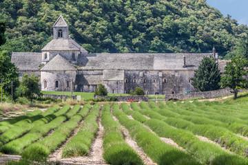 Abtei Senanque im Luberon