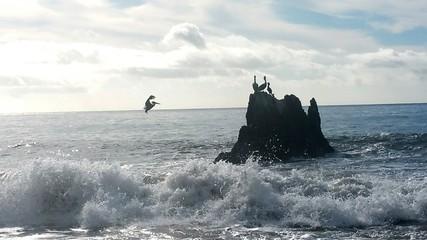 Scenic Shot Of Headland In Calm Sea Fotobehang