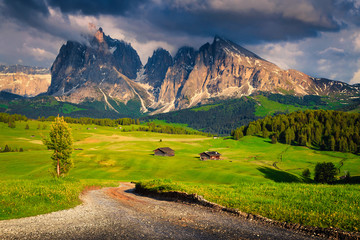 Fototapete - Alpe di Siusi natural park with wooden lodges, Dolomites, Italy