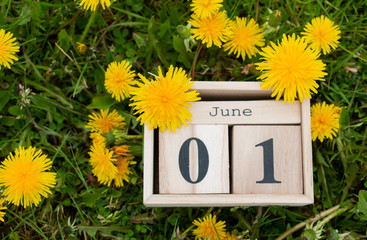 calendar organizer June 01, the first day of summer on the green grass in dandelions Fotomurales