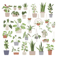 Big set with house plants in flower pots. Home gardening. Hand drawn vector illustration in flat cartoon style. Perfect for poster, sticker, print, card.