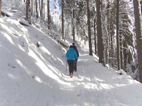 People hiking on a trail in snow covered forest in Jeseniky mountains, Czech Republic