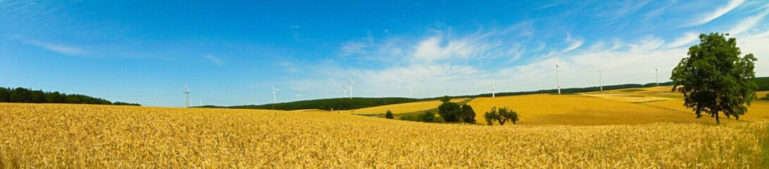 Wind Turbines In Agricultural Fields Fototapete