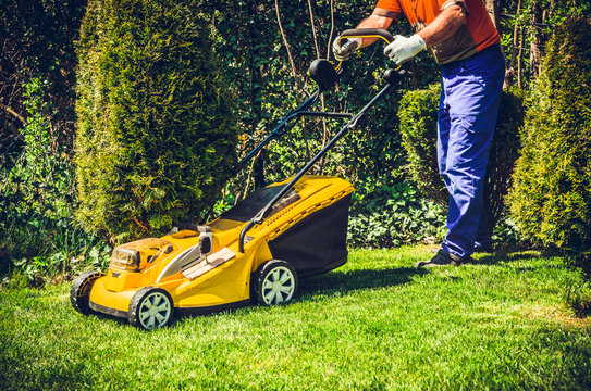 Mowing the grass. A man mows the grass with an electric mower. The concept of working in the garden and caring for the beauty of the garden. The gardener mows the grass with a battery mower.