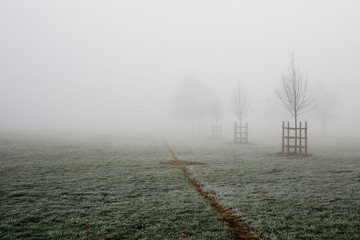Foto auf Gartenposter Khaki Scenic View Of Landscape Against Sky During Foggy Weather