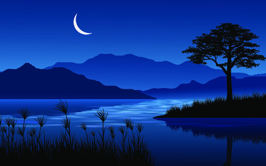 Wall Murals Dark blue night landscape with lake and crescent moon