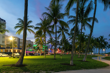 Wall Mural - Nightlife in Ocean Drive at night in Miami Beach, Florida