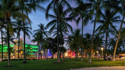 Wall Mural - Ocean Drive at night in Miami Beach, Florida