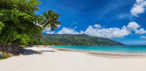Wall Mural - Panoramic view of amazing Beau Vallon beach with white sand and coconut palm tree on Mahe island, Seychelles.