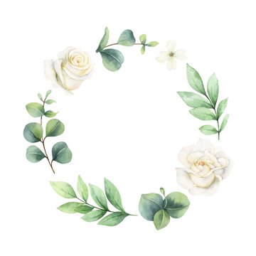 Watercolor vector wreath with green eucalyptus leaves and white roses.