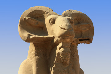 A close up of an ancient Egyptian ram statue in Luxor in Egypt near the Karnak temple. This figure stands alone, others in a row. In the background the blue sky.