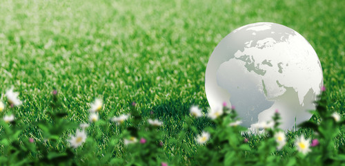 Glass globe or earth in green grass showing eco concept with copyspace, 3d rendering