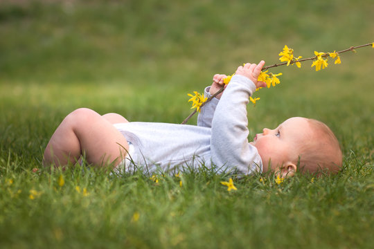 Little baby boy is lying on green gras and playing with yellow flower