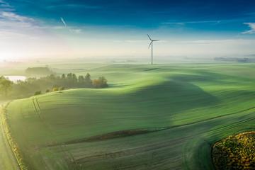 Wind turbine at sunrise on green field, aerial view