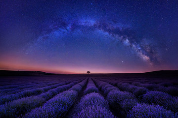 Stunning night landscape with Milky Way Galaxy above a beautiful blooming lavender field, Bulgaria