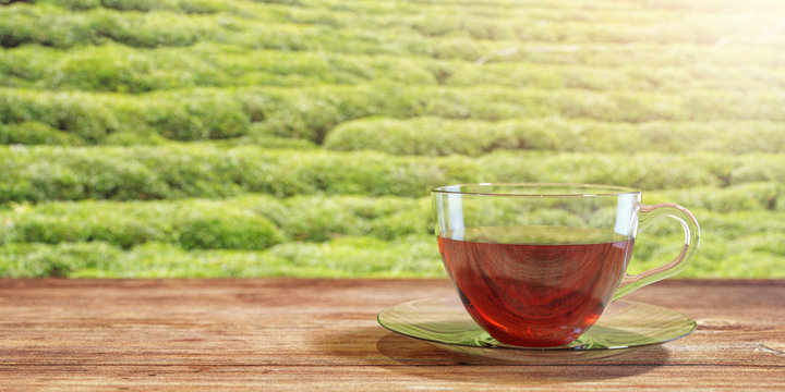 3D illustration of a cup of tea on a brown wooden table with natural green tea field background. Textured Wallpaper.