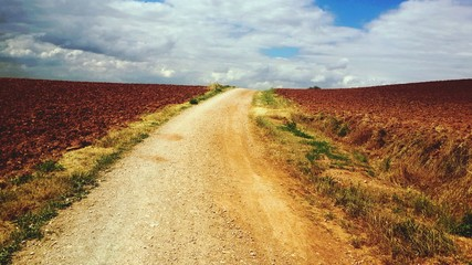 Foto auf Gartenposter Honig View Of Dirt Road Along Countryside Landscape