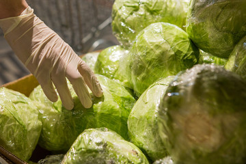 A man in white gloves in a store buys food. Man holds cabbage in his hands
