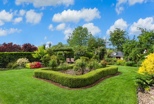 Amazing manicured backyard with large lawn, bushes, hedges, and plants on sunny day with blue sky