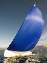 sail boat with rigged blue spinnaker sail in Iceland