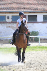 Girl riding sorrel horse in the riding school