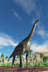 Cetiosaurus Dinosaur - Cetiosaurus herbivorous dinosaur is surrounded by Dorygnathus Pterosaur birds during the Jurassic Period.