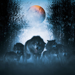 The pack of red moon,Group of ferocious wolf in the forest,3d illustration