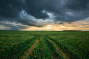 Storm clouds , dramatic dark sky over the rural field landscape