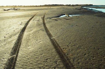 View Of Tire Marks On Shore