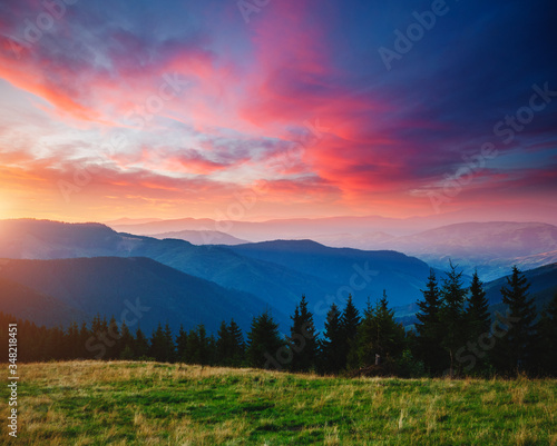 Wall mural Beautiful alpine highlands in morning light. Location place Carpathian mountains, Ukraine.