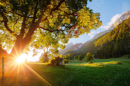 Wall mural Beautiful view of alpine countryside in morning light.