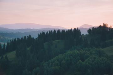 壁紙(ウォールミューラル) - Splendid countryside landscape in the morning light. Location place Carpathian mountains, Ukraine, Europe.