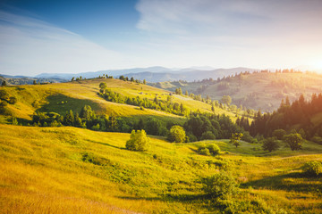 壁紙(ウォールミューラル) - Fantastic countryside landscape in morning light. Location place Carpathian mountains, Ukraine, Europe.