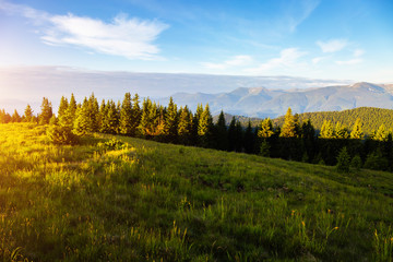 壁紙(ウォールミューラル) - Idyllic countryside landscape in the morning light. Location place Carpathian mountains, Ukraine, Europe.