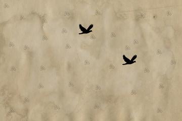 Foto auf AluDibond Schmetterlinge im Grunge grunge background with butterflies