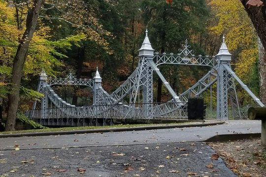 Bridge Against Trees During Autumn