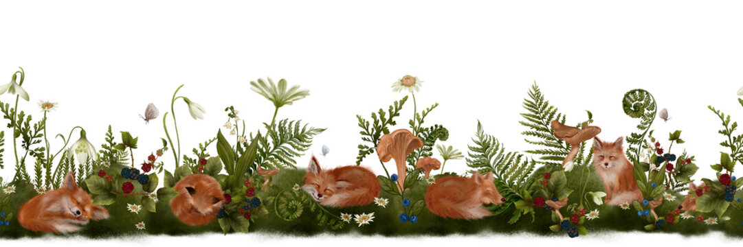 Seamless border pattern with wild berries, forest flowers, mushrooms and sleeping red foxes. Realistic hand drawn botanical illustration on white background.