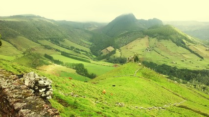 Fototapeten Khaki Scenic View Of Green Landscape