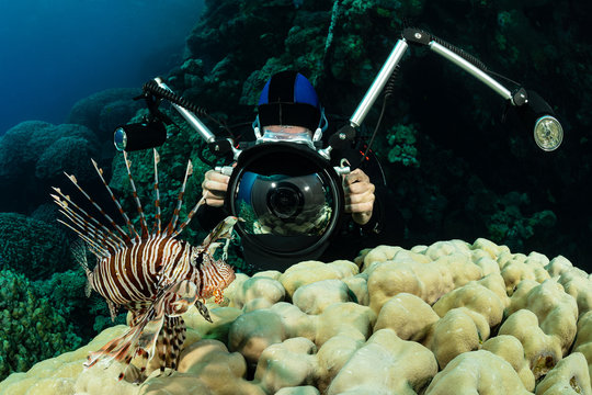 red lionfish fish on reef with an underwater photographer diver